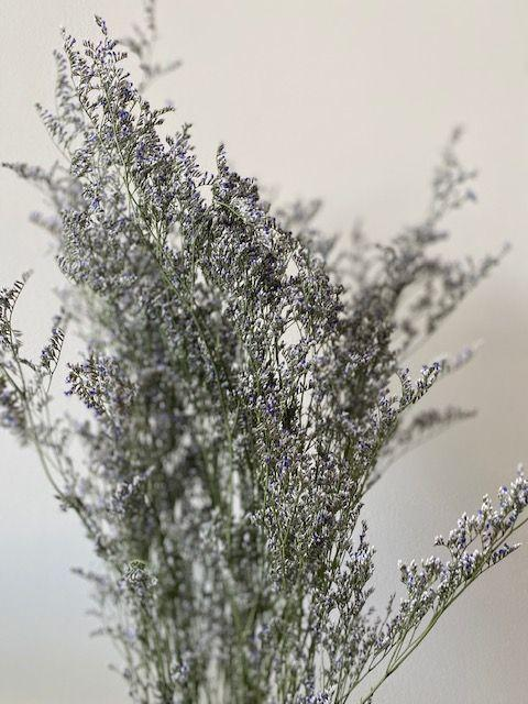 Caspea Limonium Supreme Purple (dried)