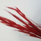 Wheat Assorted colours (Dried) Soft Pink, Red, Black